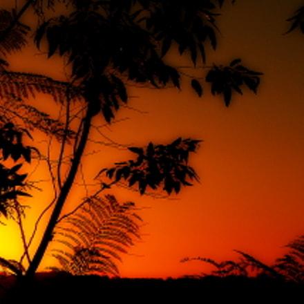 hot landscape ...., Fujifilm FinePix SL1000