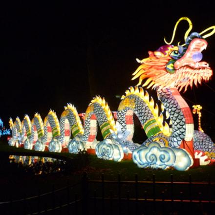Antwerp Zoo Chinese Dragon, Panasonic DMC-FS42
