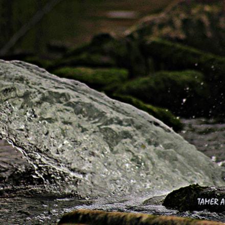 بحيرة بنغازي, Canon EOS 1200D