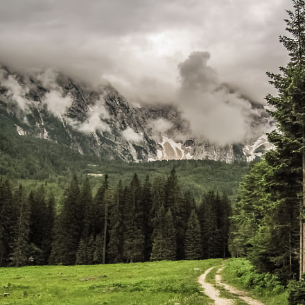 Path into the mountain, Canon POWERSHOT A530
