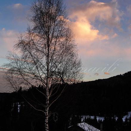 Icy Sunset, Sony DSC-P200
