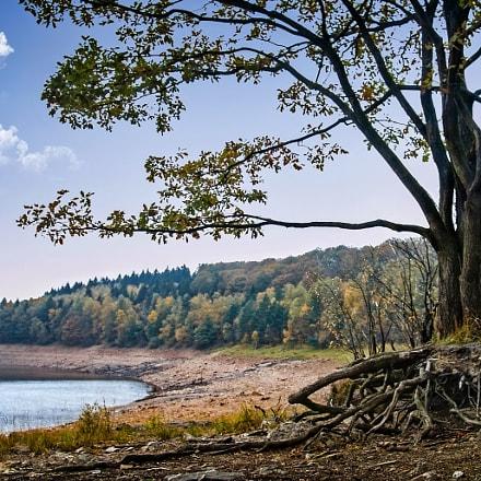 Lac d' Eupen Belgium, Sony DSC-F828