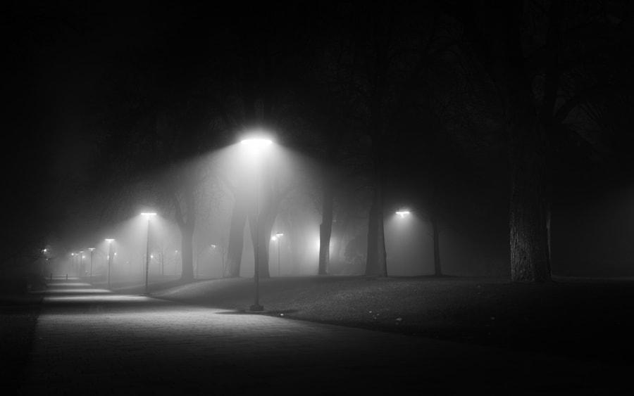 One foggy night, автор — Alex Bihlo на 500px.com