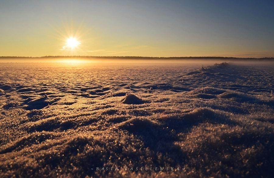 Sunset, автор — Basia Rasielewska на 500px.com