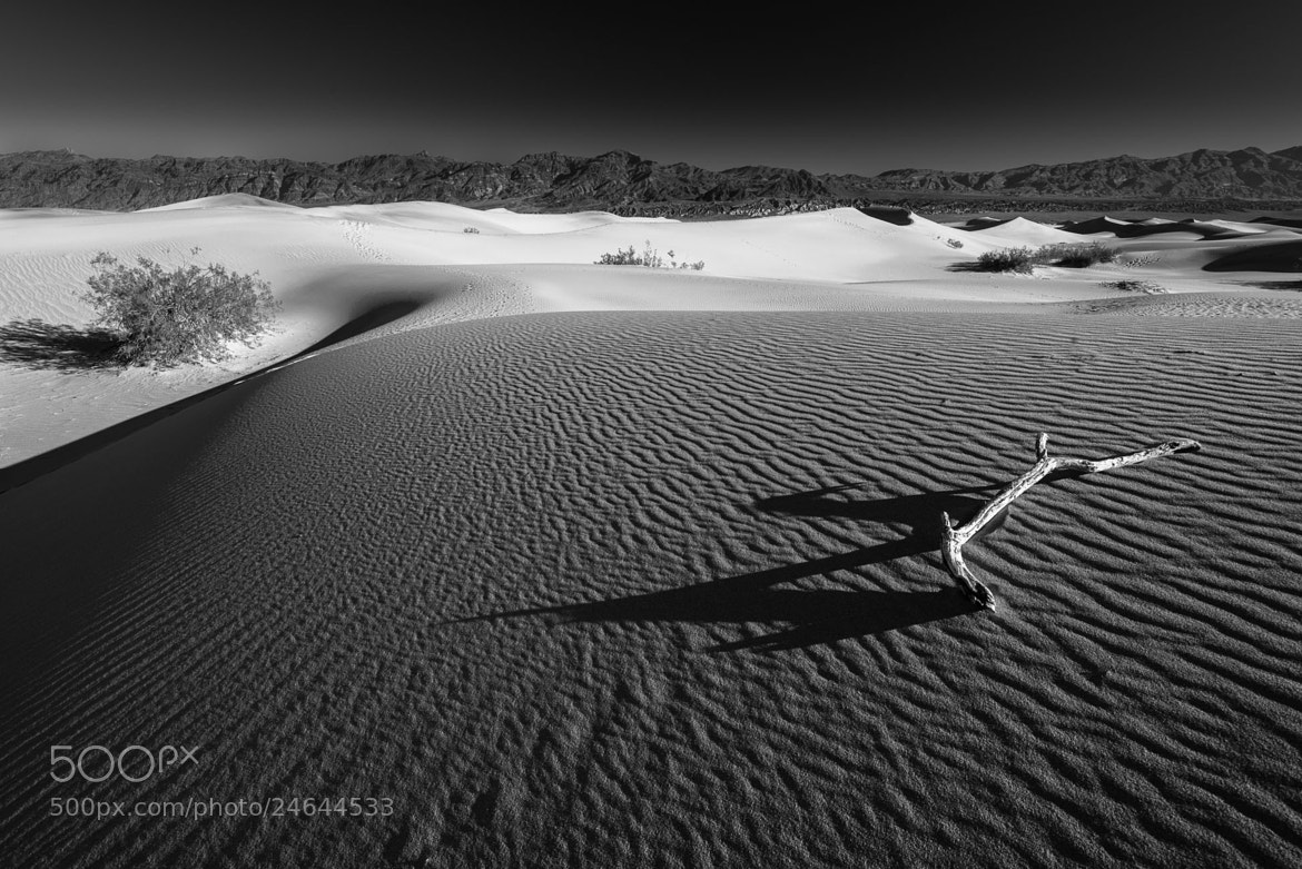 Photograph Dunes by Joshua Gilpatrick on 500px