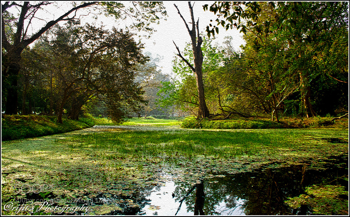Photograph Obscure lanscape by Arijit Bose on 500px