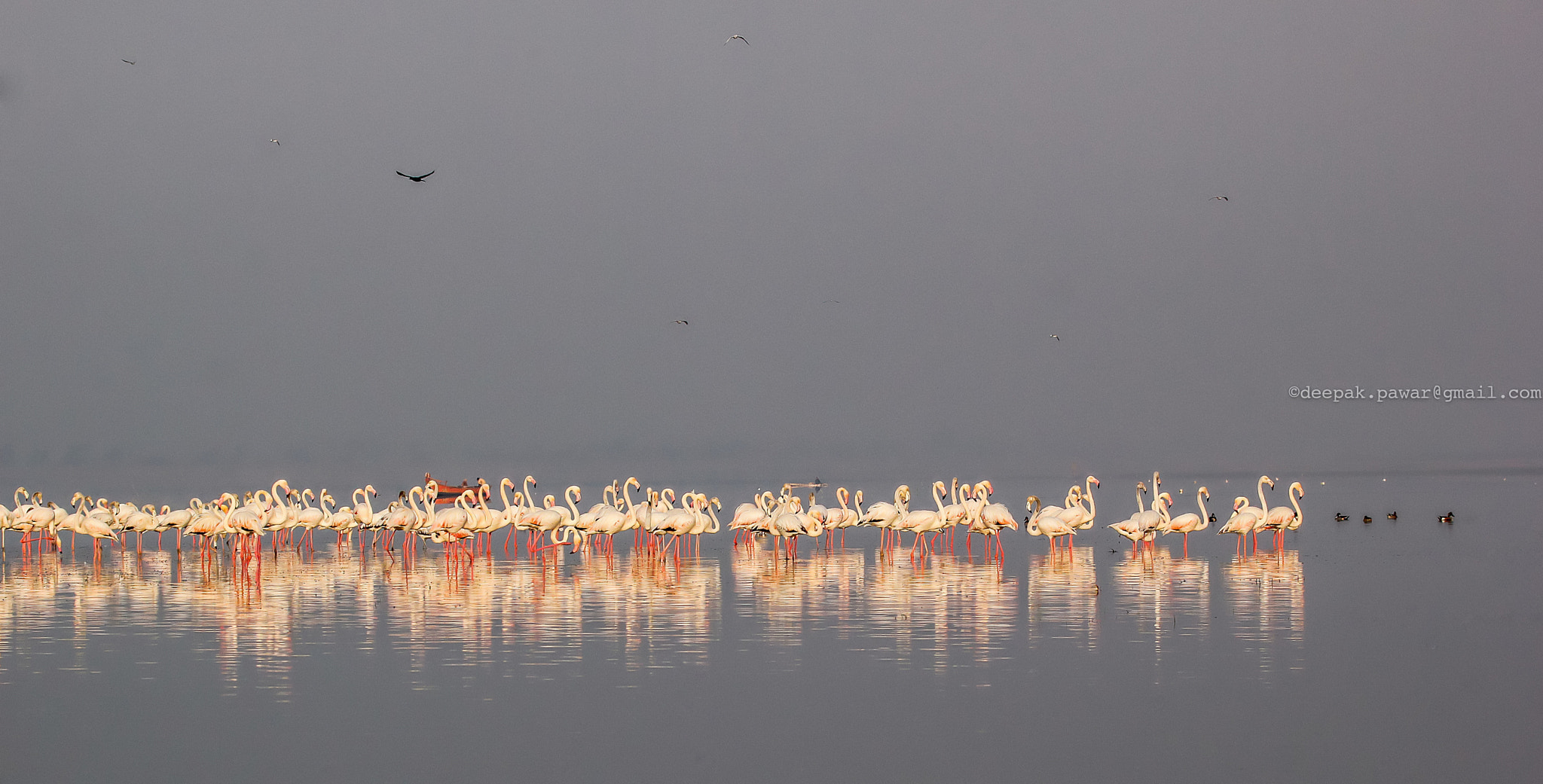 Photograph Winter conference by Deepak Pawar on 500px
