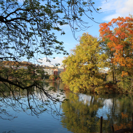 Fall season at Parc, Canon EOS 600D, Canon EF-S 17-55mm f/2.8 IS USM