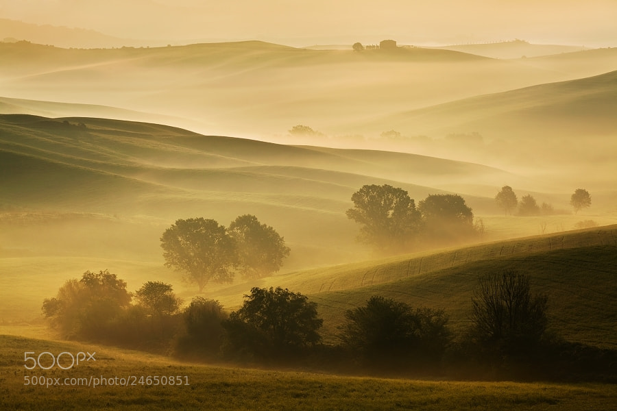 Photograph Tuscan morning by Daniel Řeřicha on 500px