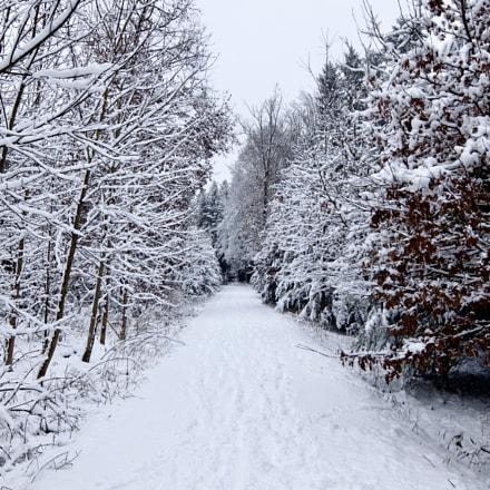 Schnee schön, Fujifilm XQ1