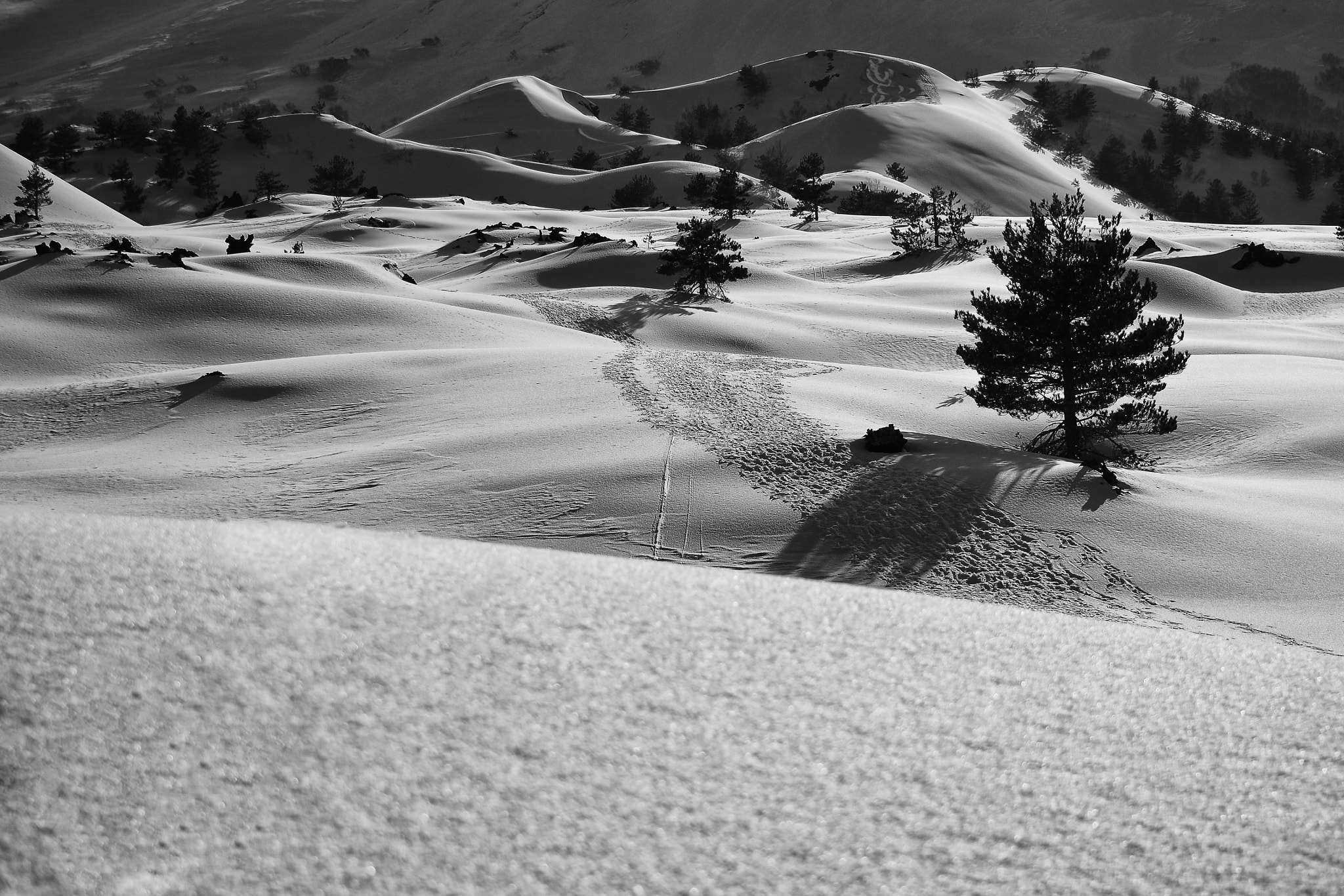 Photograph Snow land by Salvo Mangiaglia on 500px