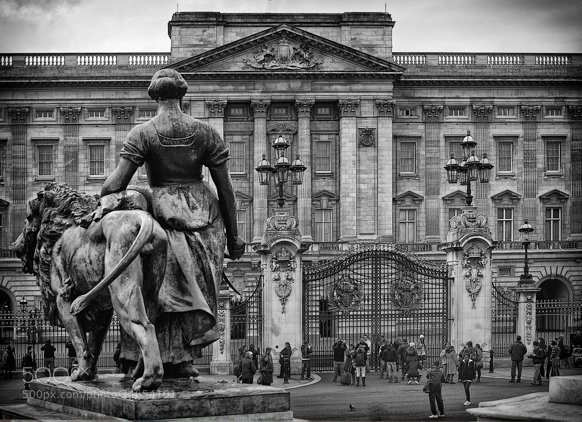 Photograph Buckingham Palace by mauro maione on 500px