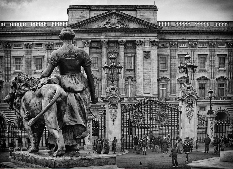 Photograph Buckingham Palace by mauro maione on 500px