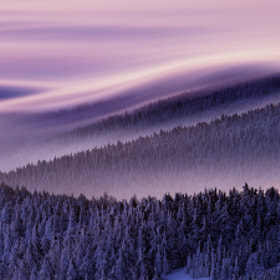 Dreamy by Martin Rak (martas)) on 500px.com
