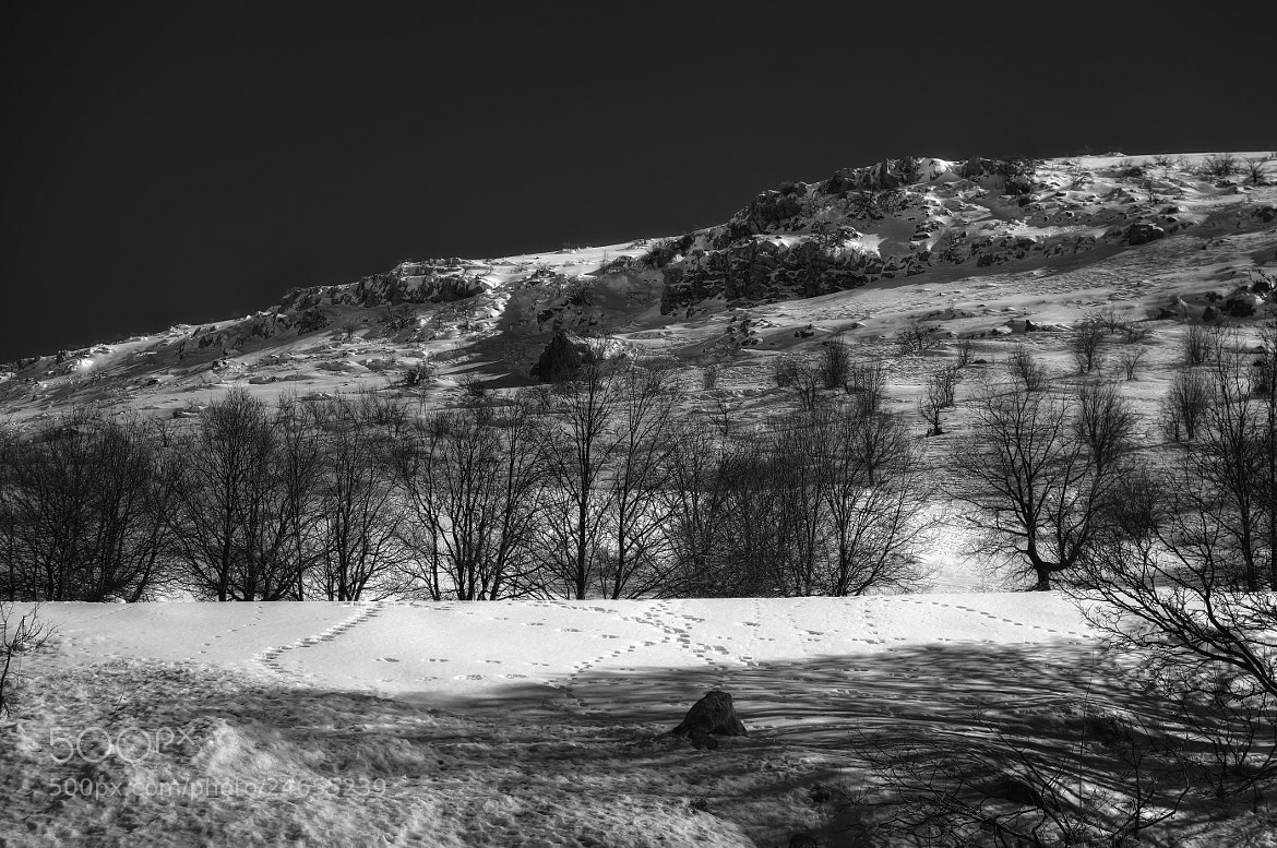 Photograph The Snowscapehe Series - V by Asi Yacobovitch on 500px