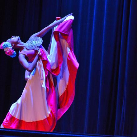 Ballet, Nikon D7000, AF-S VR Zoom-Nikkor 70-200mm f/2.8G IF-ED