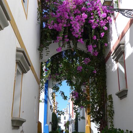 Alley in Puerto de, Panasonic DMC-LF1