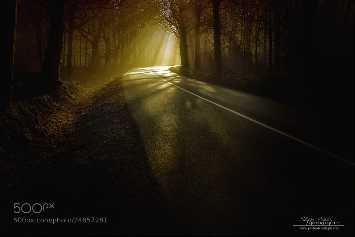 Photograph LIGHT by Philippe MANGUIN on 500px