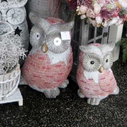 Wise owls, Panasonic DMC-LS80