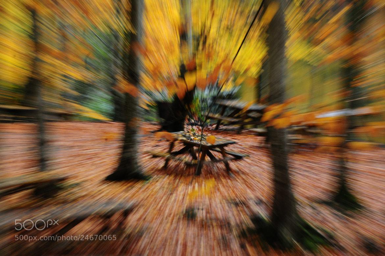 Photograph Untitled by Tevfik Ekici on 500px