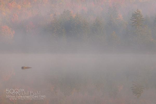 Photograph Autumn Mist by Nikhil Bahl on 500px