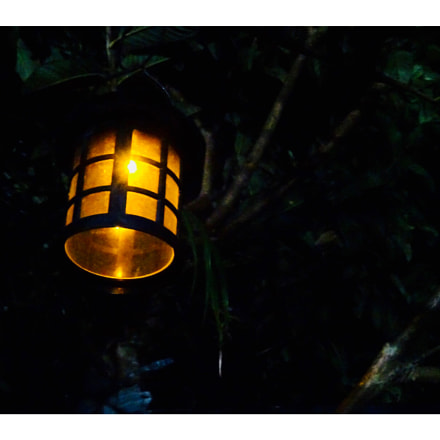 Light up the dark, Sony DSC-QX30