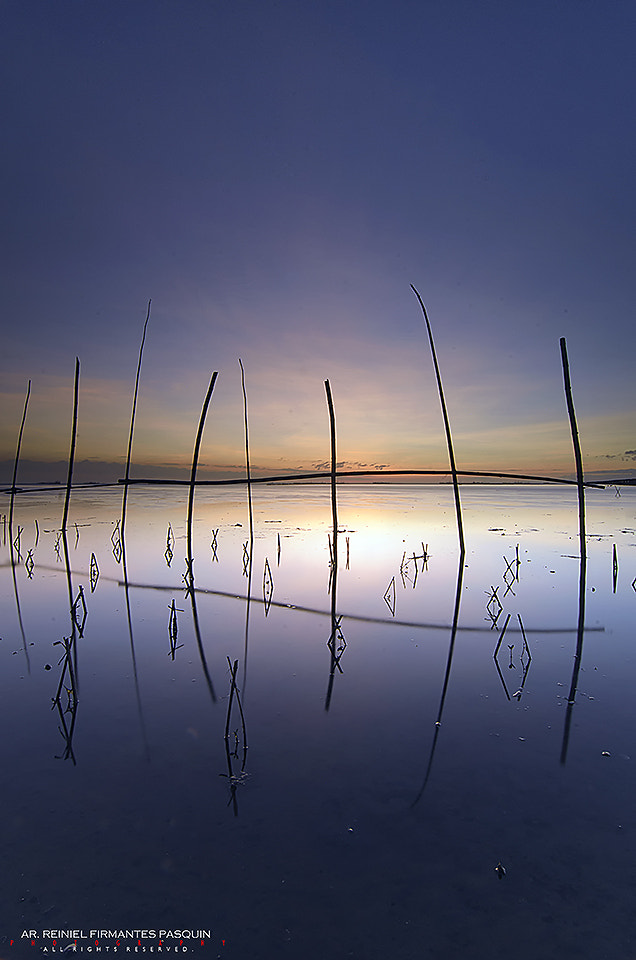Photograph Mangroves  by Reiniel Pasquin on 500px