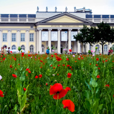 Kassel Germany , documenta, Canon DIGITAL IXUS 50