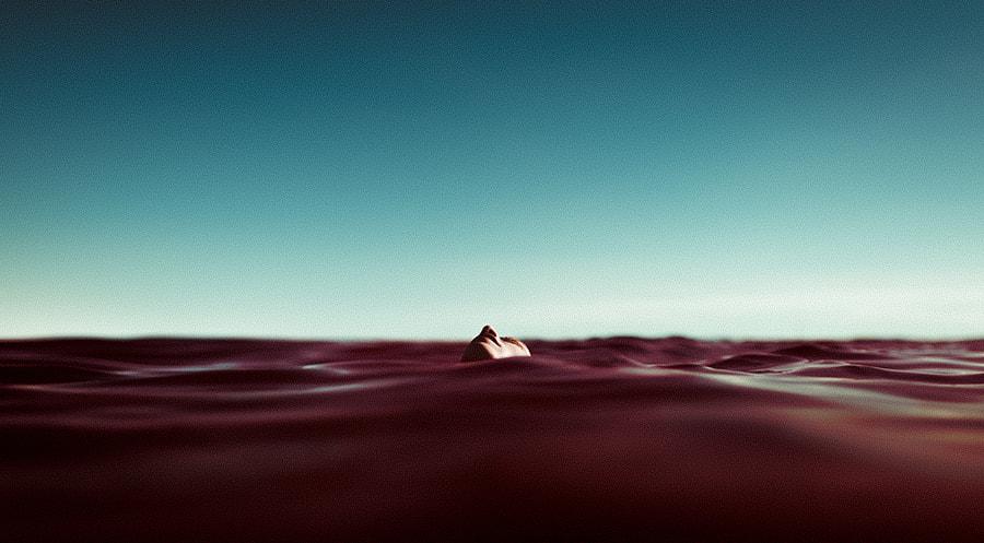 Daydream by Ibai Acevedo on 500px.com
