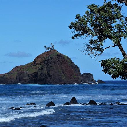 Turtle Island!, Nikon D100, AF Zoom-Nikkor 35-70mm f/2.8D