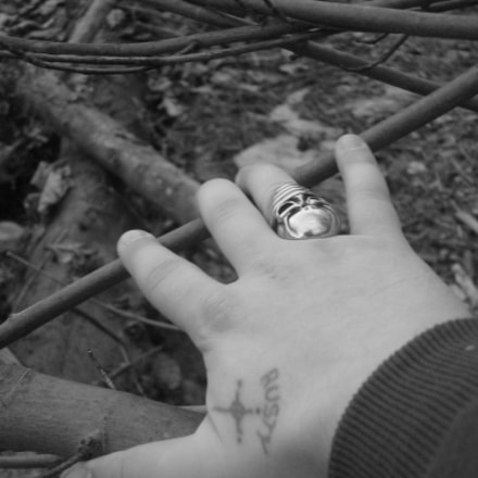 Hand with Skull Ring.jpg, Sony DSC-W90