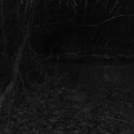 Dark River Bank.jpg, Sony DSC-W90