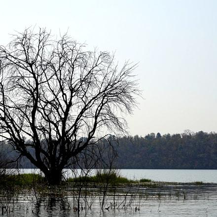 River Narmada ji, Sony ILCE-7, Tamron 18-200mm F3.5-6.3 Di III VC
