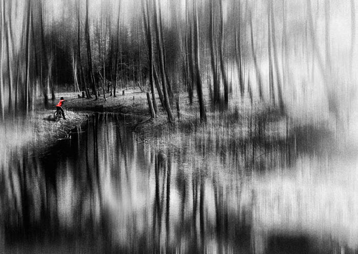 Photograph River between pines by Saelanwangsa  on 500px