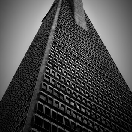 Building in perspective, Nikon COOLPIX L6