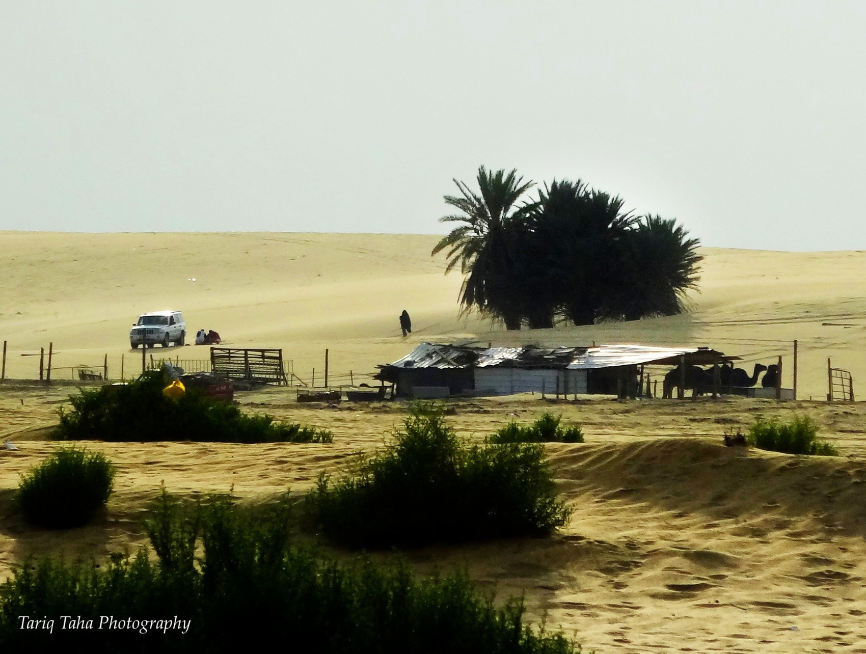Photograph Bedouins break by Tariq Taha on 500px