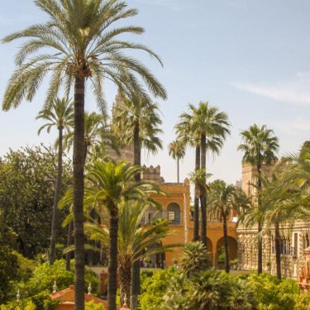 Sevilla, Fujifilm FinePix A345