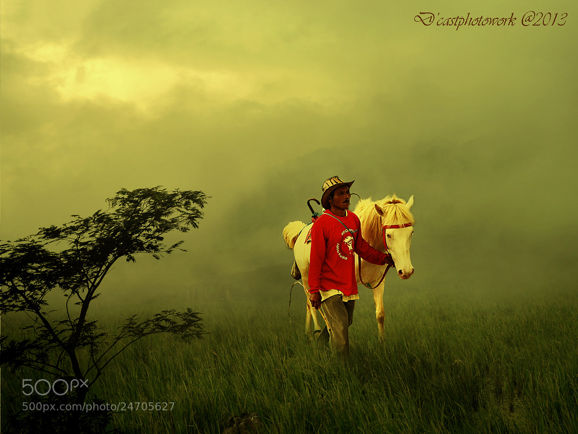 Photograph Man & Horse by D'cast Photowork on 500px