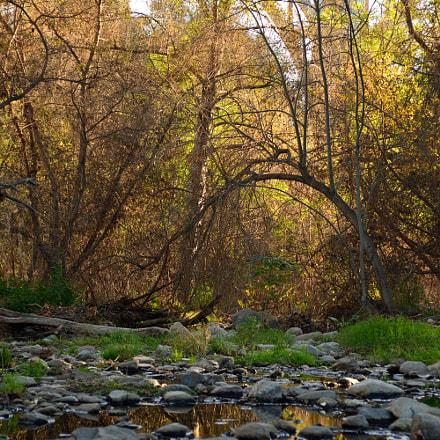 Sunset On the Trail, Nikon D7100, AF Zoom-Nikkor 28-85mm f/3.5-4.5