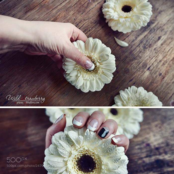 Photograph  petals by Mariana Mikhailova on 500px