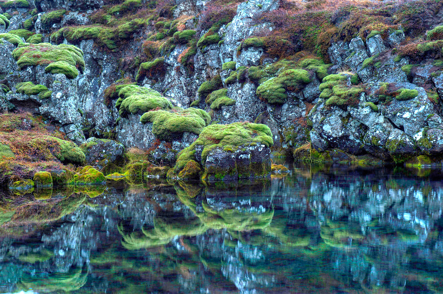 A great reflection at Þingvellir in Iceland