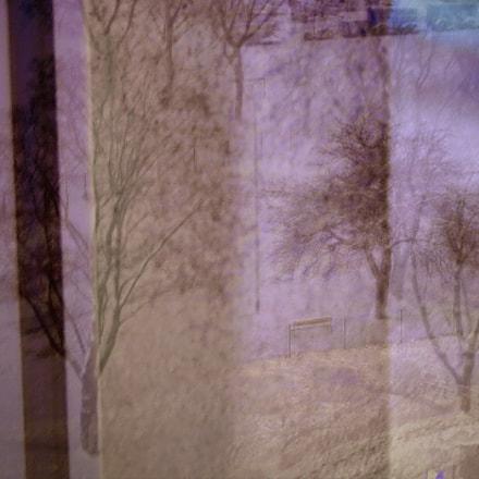 Dreamy Snowy Tree, Nikon D300, AF Zoom-Nikkor 28-70mm f/3.5-4.5D