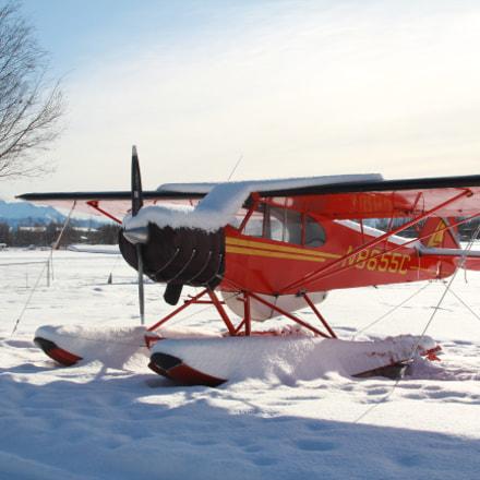 Bush plane in storage, Canon EOS REBEL T6, Sigma 30mm f/1.4 EX DC HSM