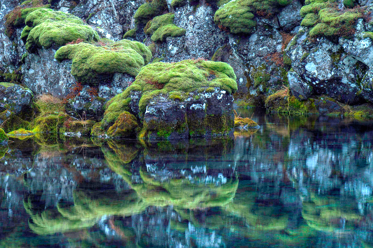 Photograph Reflections by Kim C on 500px