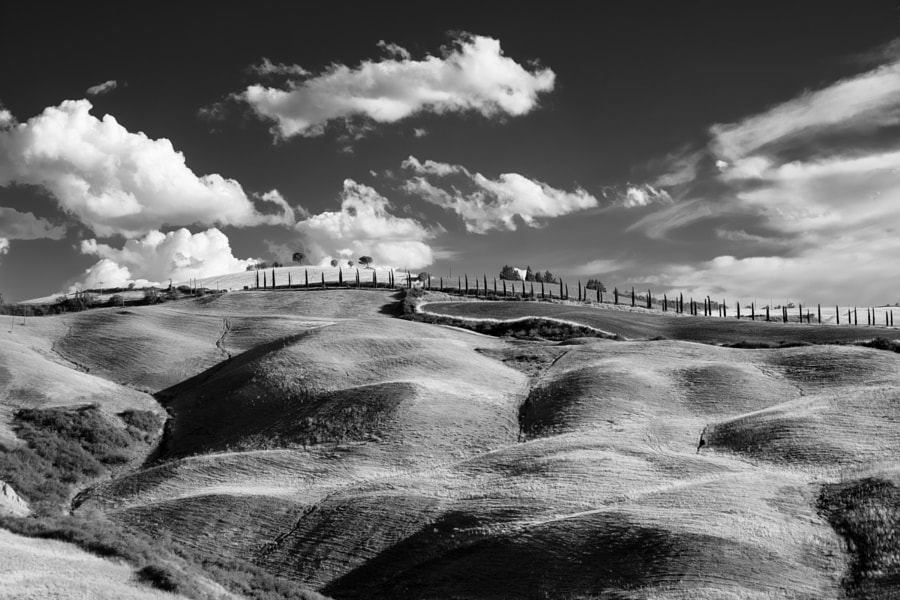 Summer landscape near Asciano by Claudio G. Colombo on 500px.com
