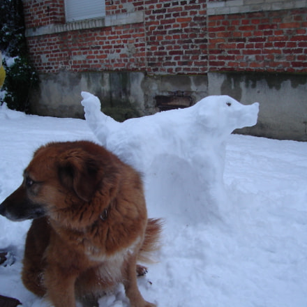 Hot dog and snow, Sony DSC-L1