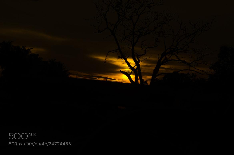 Photograph sinking sun.... by Sibi Othaloor on 500px
