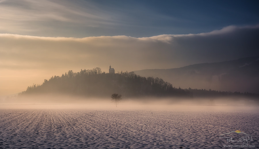 Foggy winter, автор — Peter Zajfrid на 500px.com