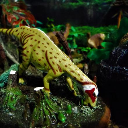Mantellisaurus, Fujifilm FinePix XP60