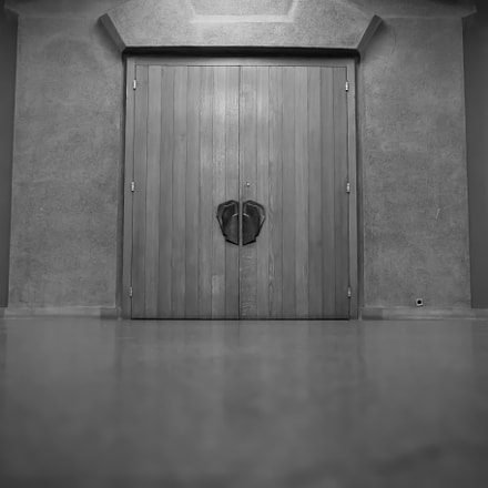 Le Goetheanum Theatre door